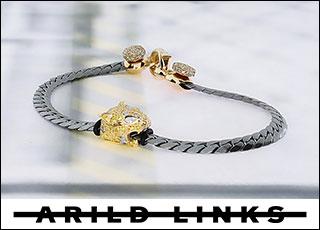 Arild Links
